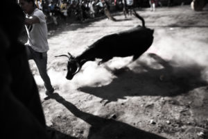 Ecuador – Do not take the bull by the horns