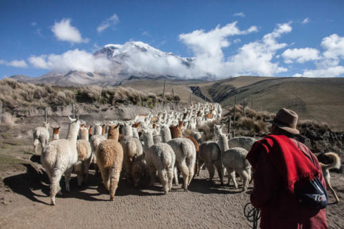 Until the 19th century, the Chimborazo was believed to be the highest mountain in the world.